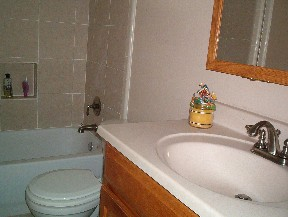 silver_and_gold bathrooms 008.JPG