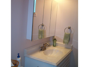 silver_and_gold bathrooms 017.JPG